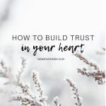 How to Build Trust In Your Heart