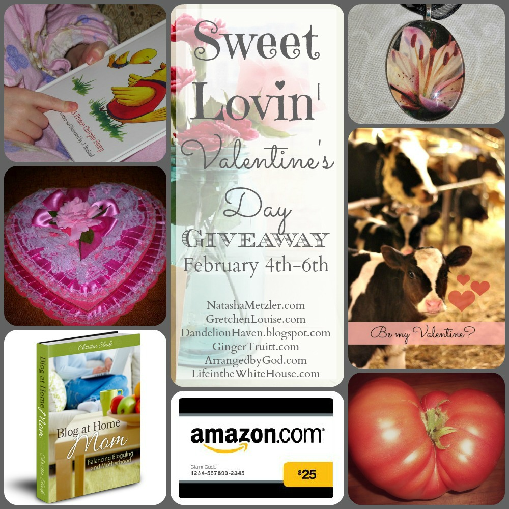 a little valentine giveaway