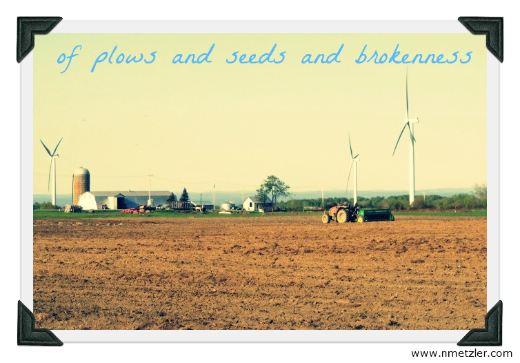 of plows and seeds and brokenness