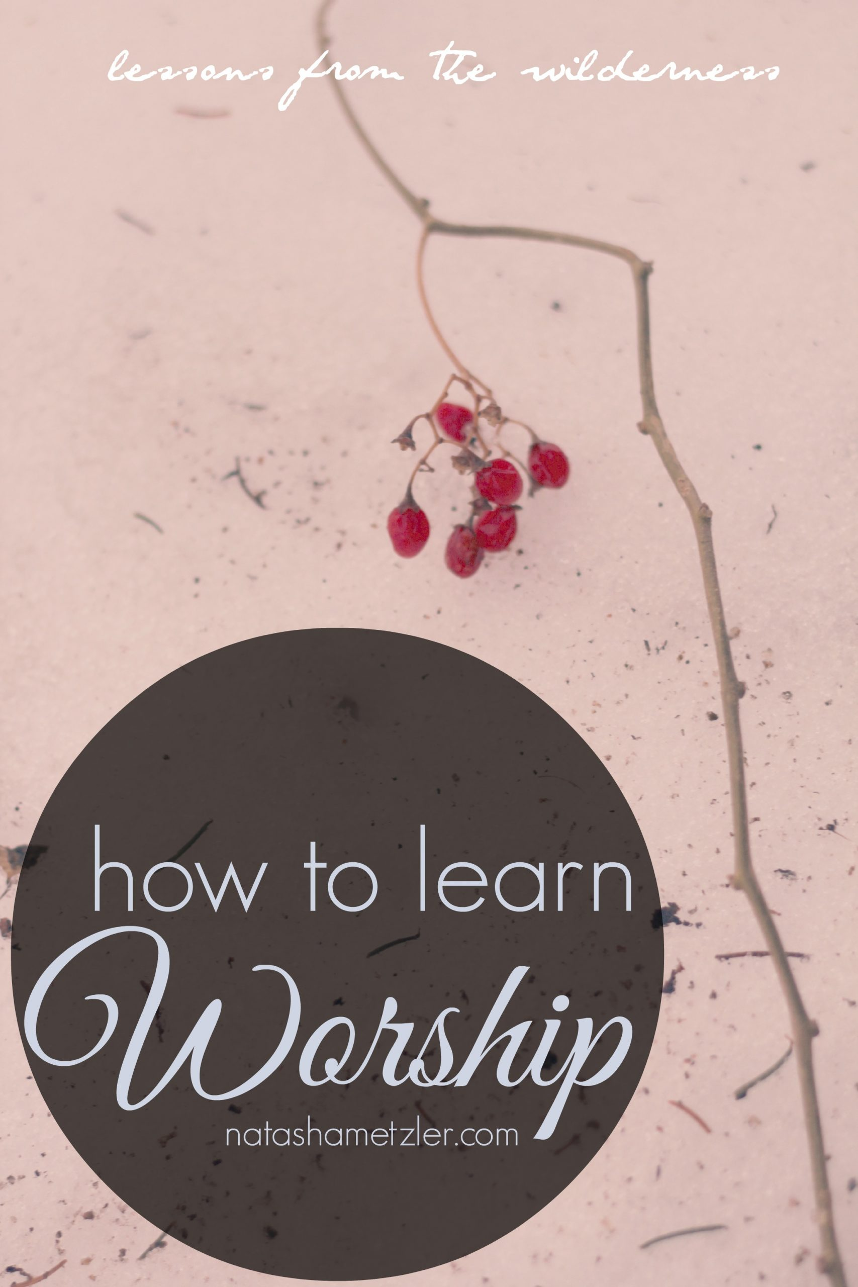 How to Learn Worship