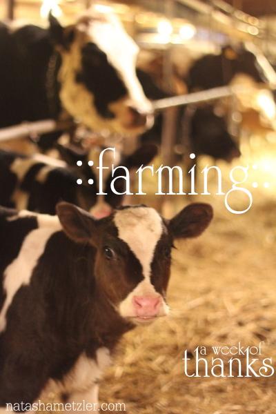 farming {week of thanks}
