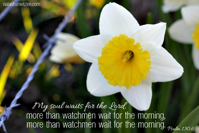 more than watchmen wait for the morning