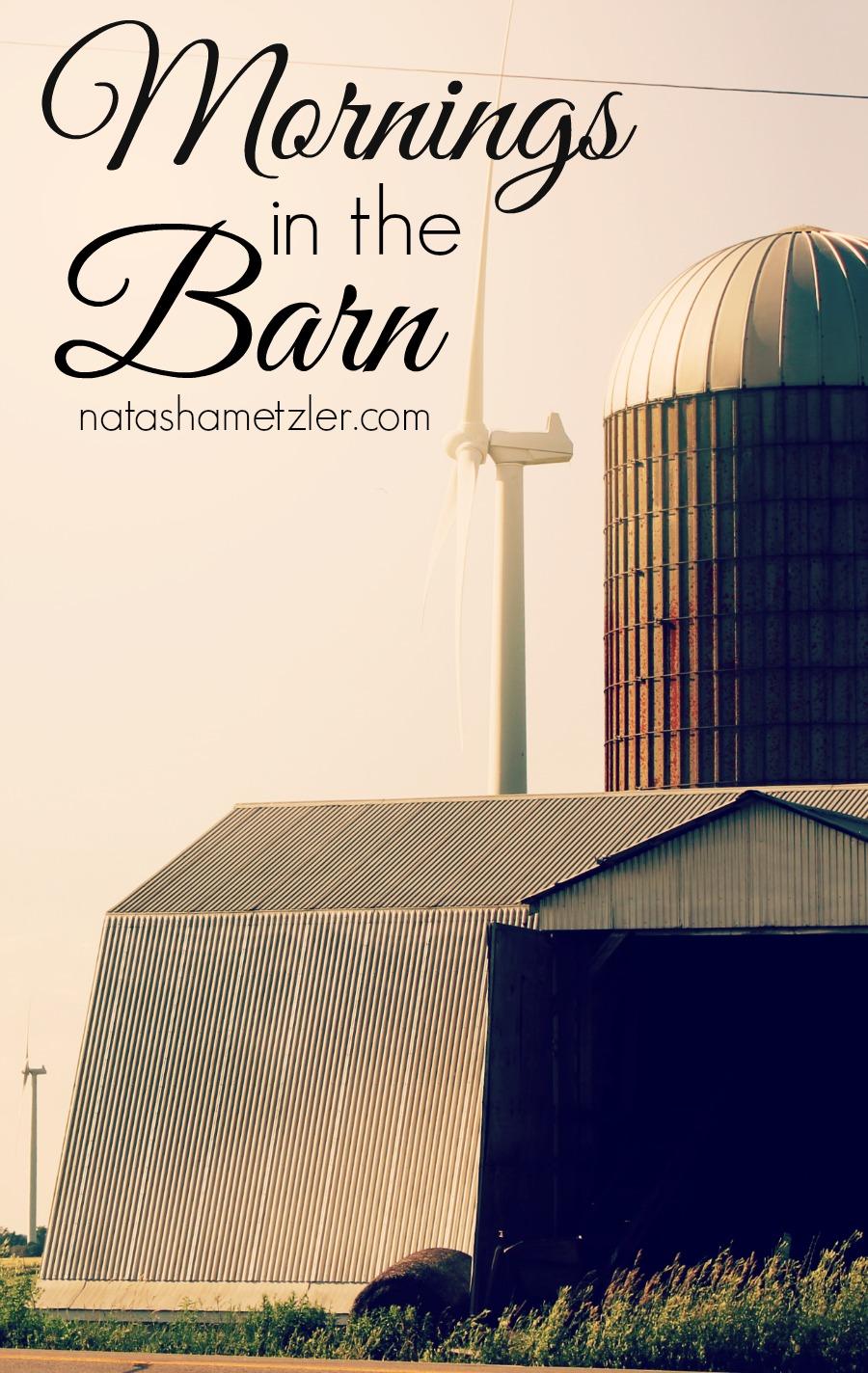 in the barn #farming