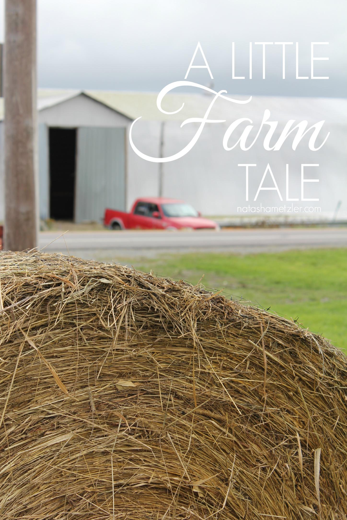 a little farm tale #humor #farming