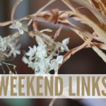 weekend {links} 2/11